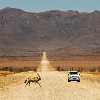 self-drive-adventures-in-namibia